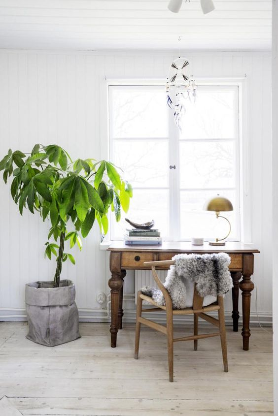 a Scandinavian home office with a stained wooden desh, a wooden chair, a potted plant and a dream catcher is al cool