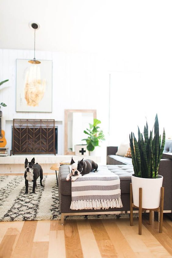 a welcoming summer living room with a grey sectional, printed textiles, a fireplace with a screen, potted plants and some artworks