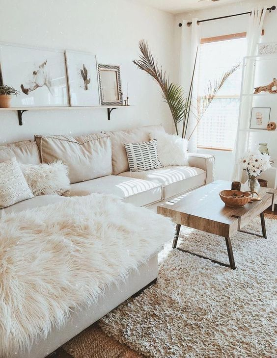 an inviting living room with a white sofa, a low coffee table, a ledge gallery wall and a potted statement plant