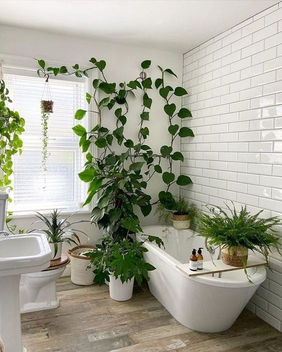 a small neutral bathroom with white subway tiles and laminate floors, neutral appliances and potted greenery and plants all around
