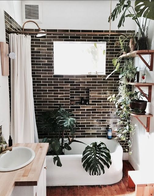 a small and cozy bathroom with a black tiled accent wall, a large shelving unit with potted plants and a statement one in the tub