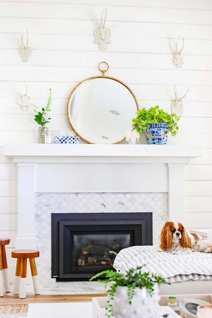 a bright summer mantel with a round mirror, potted greenery and blooms, corals and antlers on the wall
