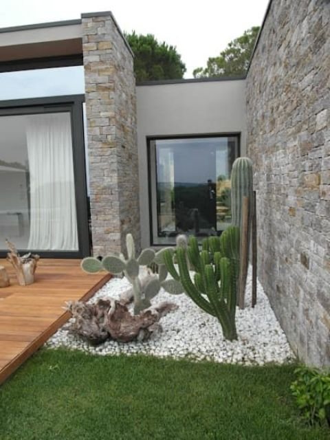 a chic modern front yard with white pebbles and grass, with cacti and driftwood looks bold and chic and paired with a desk is amazing