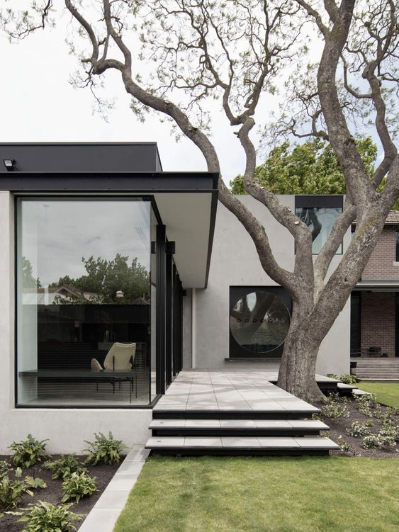 a fabulous modern front yard with grass, with greenery in low built-in flower pots, steps and a large living tree that makes a statement