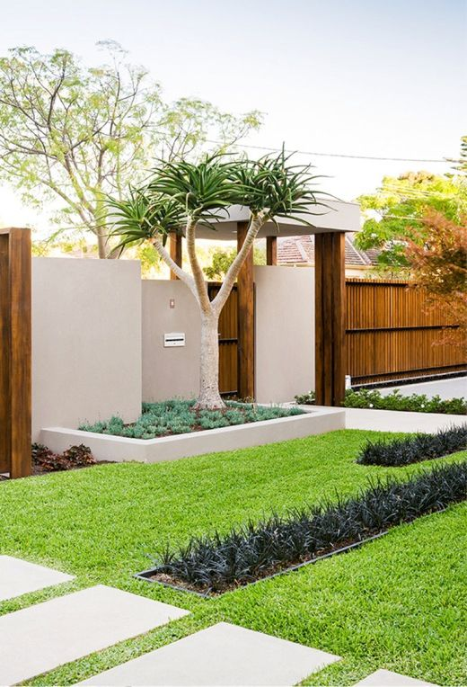 a gorgeous polished modern front yard with grass and succulents, with a tree and succulents by its side by the fence