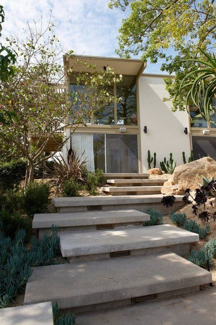 a modern desert front yard with stone tiles forming a path up, with greenery, succulents and cacti and some trees that create a dreamy space