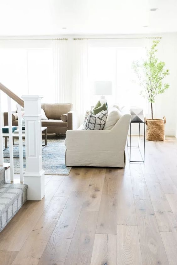a modern farmhouse living room with hardwood floors, neutral furniture and printed pillows, a potted plant and a lovely rug