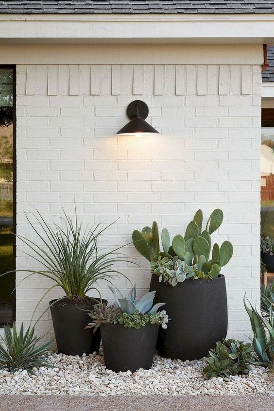 a modern front yard with pebbles and black planters with cacti and succulents looks bold, modern and desert-like