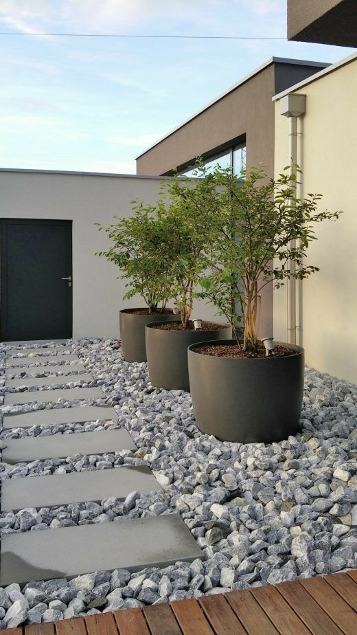 a modern front yard with rocks, tiles, oversized planters with trees is a very chic and bold idea for any home, it doesn't require much maintenance