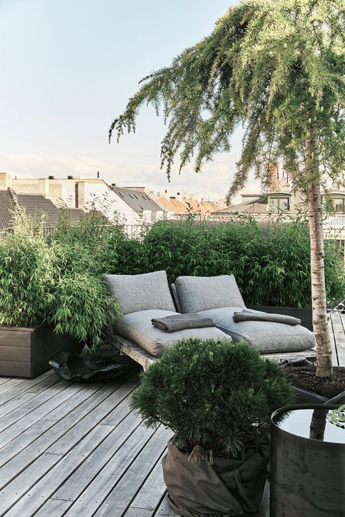 a small and cozy rooftop terrace with a wooden deck, a greenery wall, grey loungers and potted trees is a welcoming zen space