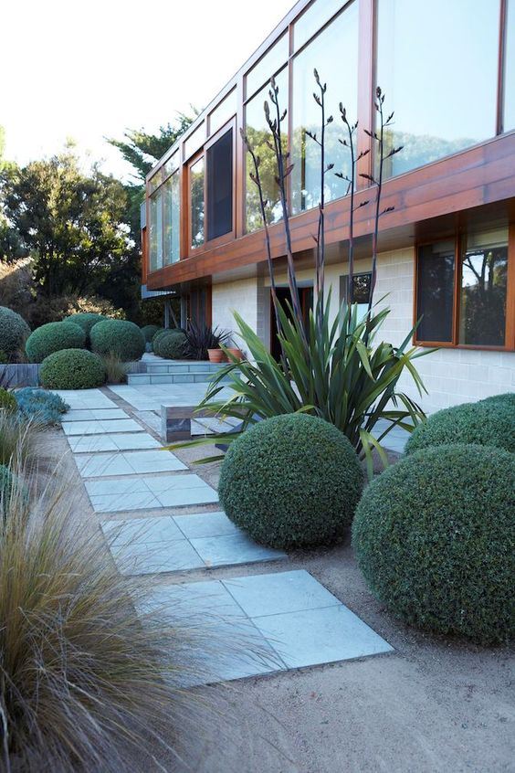 stone tiles, green balls, grasses, tall plants make up a very stylish and chic space in elegant modern style