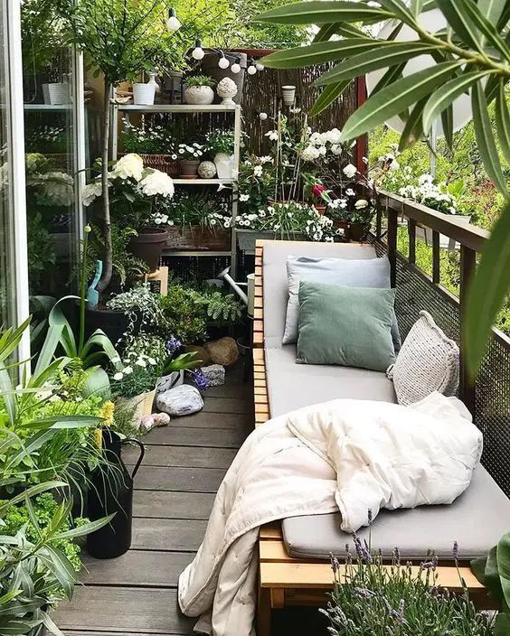 a modern small balcony turned into a real orangery, with a modern planked daybed and lots of potted plants and blooms around