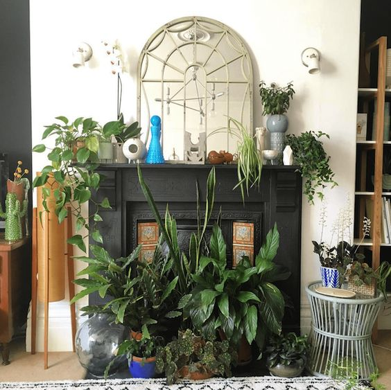 a fireplace with a black mantel, lots of potted plants on display in the fireplace and on the mantel is a gorgeous idea