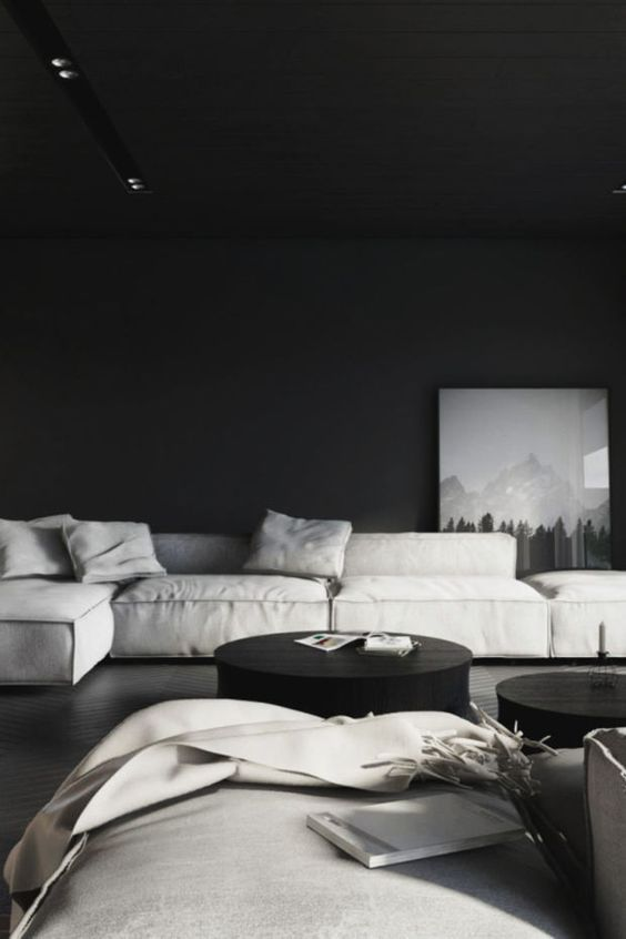 a moody living room with black walls and a ceiling, low grey seating furniture and black round walls for monochrome lovers