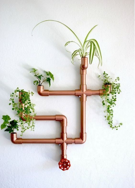 a unique wall-mounted copper fixture used as a planter for several plants is a creative and bold idea