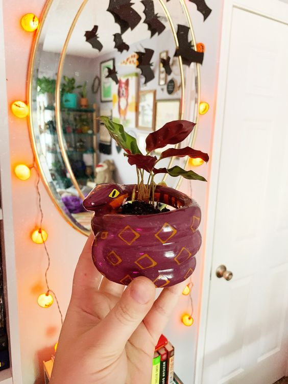 a purple snake planter wiht a purple plant is a cool decor idea for Halloween, scary and cute at the same time