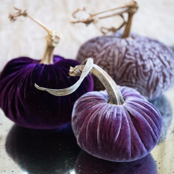lilac and purple velvet pumpkins are great for Halloween and just fall decor, you can buy or DIY them