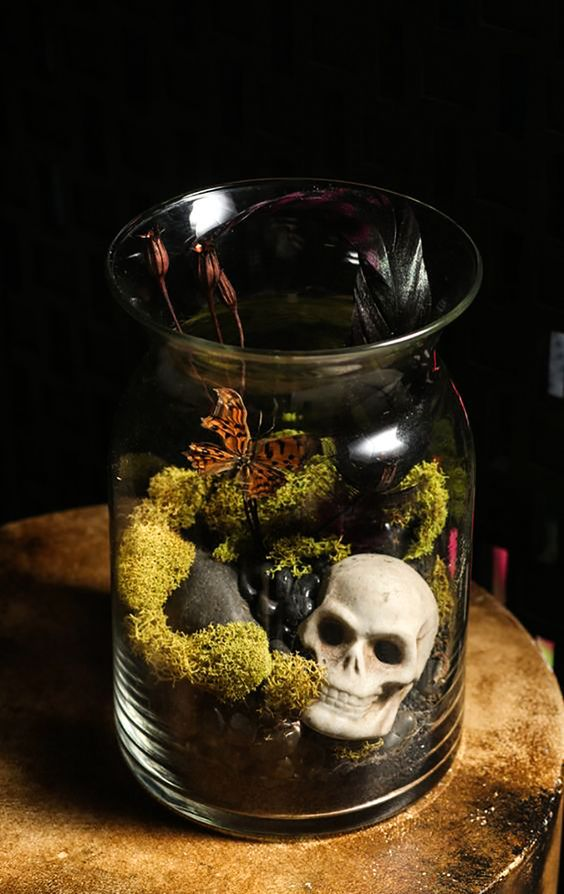 a Halloween terrarium with moss, pebbles, butterflies, dried blooms and a small skull is a bold and cool idea for Halloween decor
