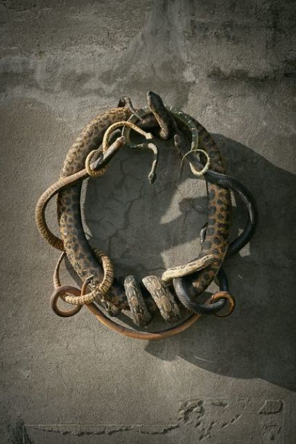 a catchy and all natural and realistic looking Halloween wreath of snakes will shock your guests for sure