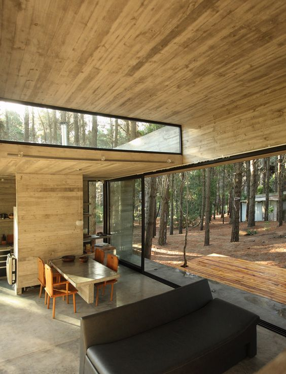 a contemporary cabin with a glazed wall and a clerestory window for more light and views and minimalist furniture
