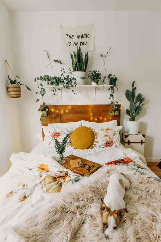 a fall boho bedroom with a stained bed with neutral and printed bedding, a shelf with potted plants, a mustard pillow and lights is a very cozy space