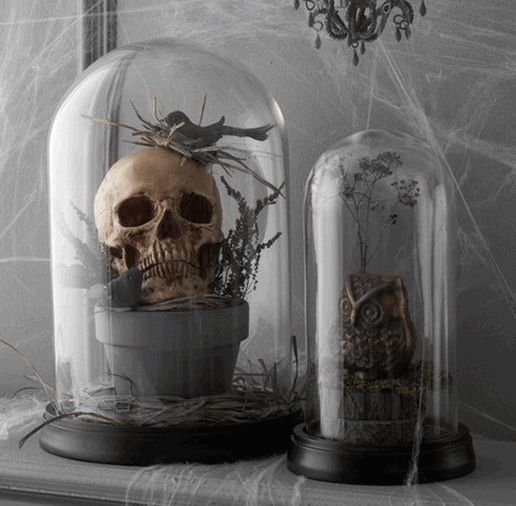 a planter with a skull and a bird, a faux owl placed into cloches for moody and chic Halloween decor that wows