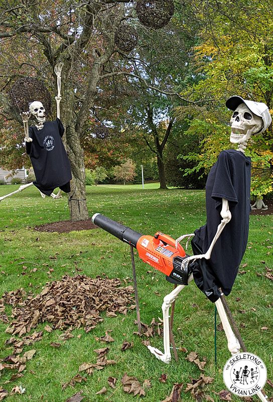 a scary and bold Halloween skeleton scene for outdoors is a cool solution for modern outdoor Halloween styling