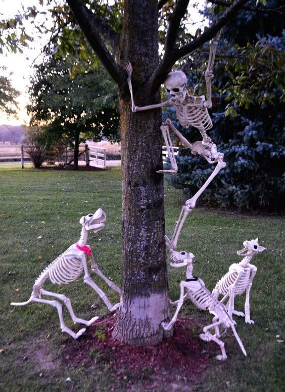 a skeleton saving itself from skeleton dogs is a cool idea to style your outdoor space for Halloween