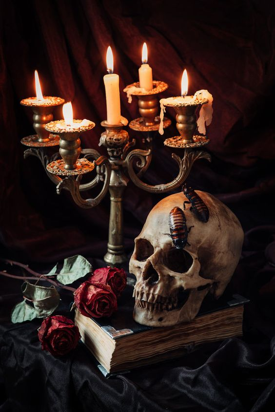 sophisticated moody Halloween decor with a vintage book, a candelabra, red roses and a skull with some roaches is chic