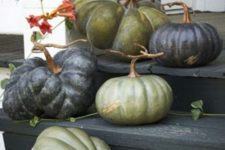ugly green and black heirloom pumpkins placed on the steps make up a cool effortless Halloween porch