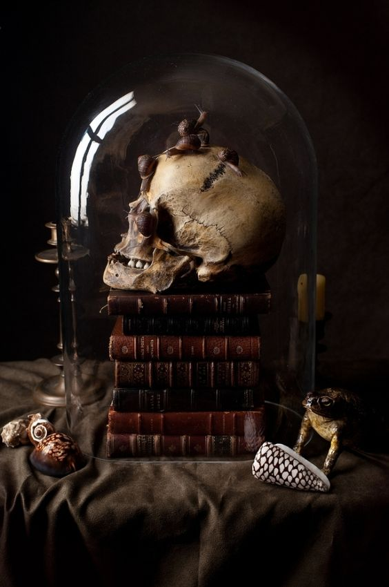 vintage Halloween decor of a stack of vintage books, a skull covered with snails, a cloche is a stunning moody solution