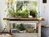 Cute Little Indoor Herb Garden