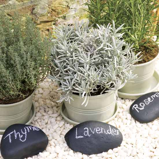 Picture of easy to make stylish herb garden for Easy herb garden ideas