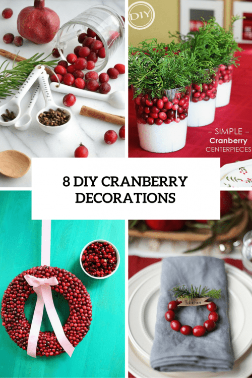 8 DIY Eye-Catching Cranberry Decorations For Winter And Christmas