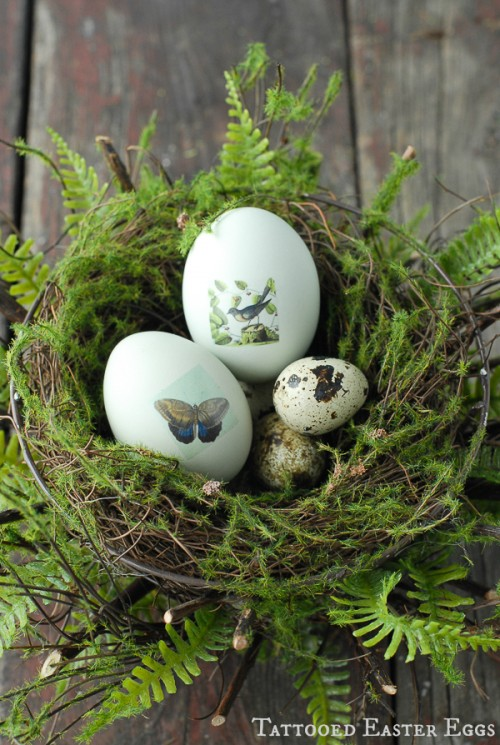 tattooed Easter eggs (via boulderlocavore)