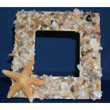 beach shells and starfish frames