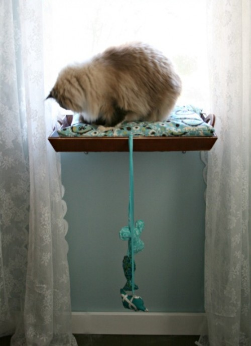 Amazing Diy Cat Window Perch