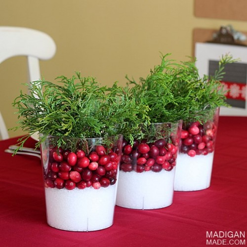 easy cranberry centerpiece (via madiganmade)
