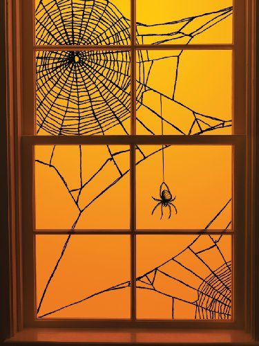 spiderweb windows