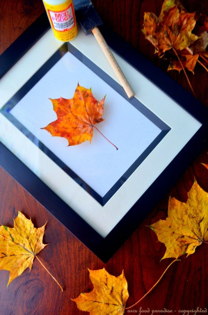 preserving leaves with Mod Podge
