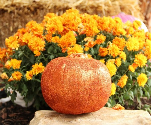 juicy glitter pumpkin (via blog)