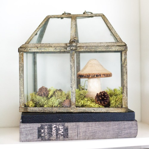 Amazing DIY Non-Living Terrarium