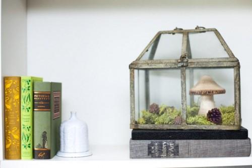 Amazing Non Living Terrarium