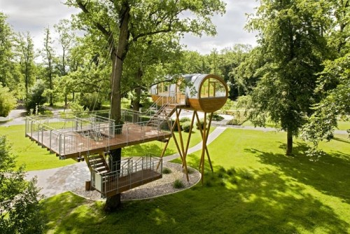 Amazing Tree House Office
