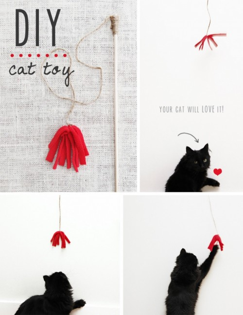 12 Awesome And Easy To Make Cat Toys