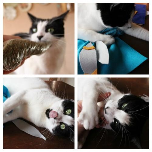 felt leaves cat toys (via onmyhonoriwilltry)