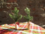 cork and branches place card holders