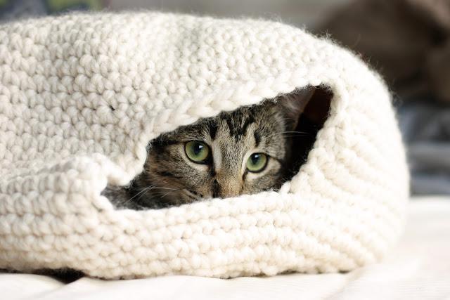 crocheted cat nest