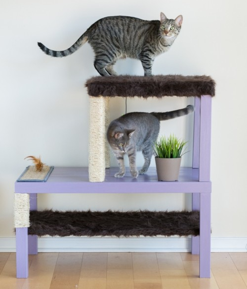 Awesome Diy Cat Condo From Ikea Tables Shelterness