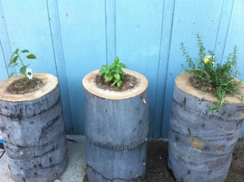 tree stump planters (via shelterness)